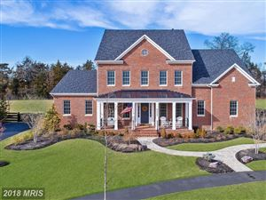 Photo of 40962 SWEET THORN LN, ALDIE, VA 20105 (MLS # LO10157341)
