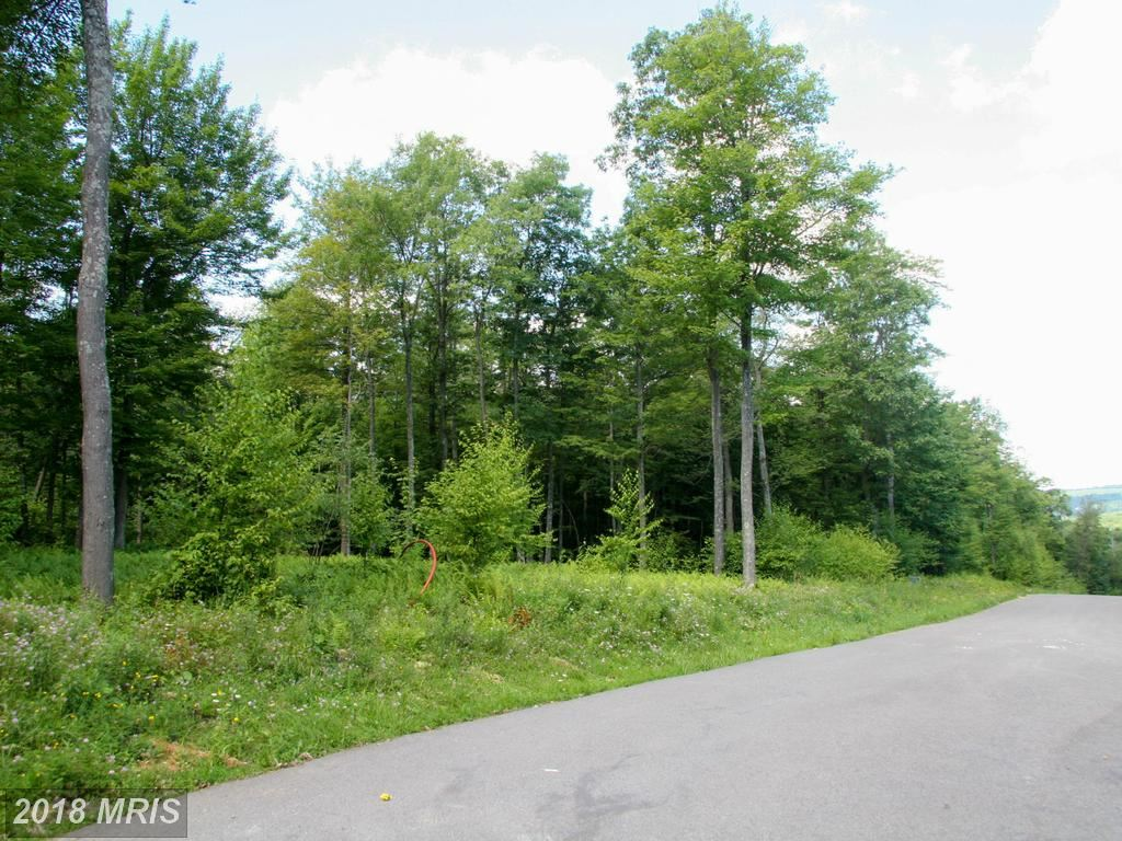 Photo for TARN DR, OAKLAND, MD 21550 (MLS # GA8575346)