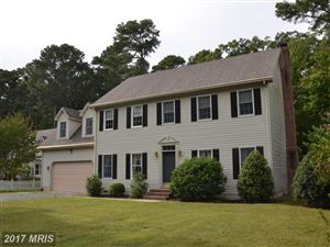 Photo of 215 TYLER AVE, SAINT MICHAELS, MD 21663 (MLS # TA10078349)