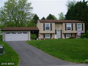 Photo of 4397 AGATE CT, MIDDLETOWN, MD 21769 (MLS # FR10234370)