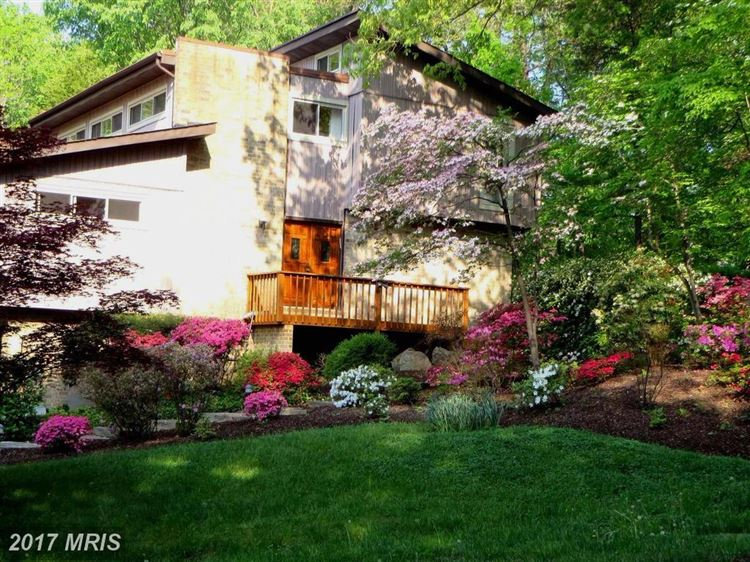Photo for 10702 GREAT ARBOR DR, POTOMAC, MD 20854 (MLS # MC10075399)