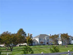 Photo of 128 TWIN COVE RD, STEVENSVILLE, MD 21666 (MLS # QA10173402)