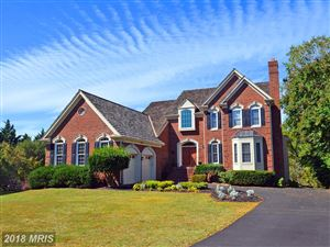 Photo of 6201 POINT CIR, CENTREVILLE, VA 20120 (MLS # FX10158420)