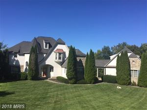 Photo of 11372 JACKRABBIT CT, STERLING, VA 20165 (MLS # LO10155452)