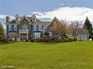 Photo of 16080 GOLD CUP LN, PAEONIAN SPRINGS, VA 20129 (MLS # LO9918456)