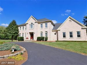 Photo of 1202 COLVIN MEADOWS LN, GREAT FALLS, VA 22066 (MLS # FX10074459)