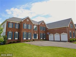 Photo of 42545 FLEMMING DR, CHANTILLY, VA 20152 (MLS # LO9013461)