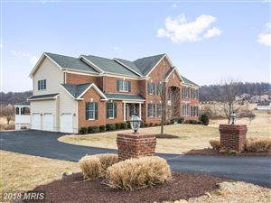 Photo of 41042 TESLA CT, WATERFORD, VA 20197 (MLS # LO10133462)