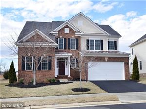 Photo of 23233 FALLEN HILLS DR, ASHBURN, VA 20148 (MLS # LO10157515)