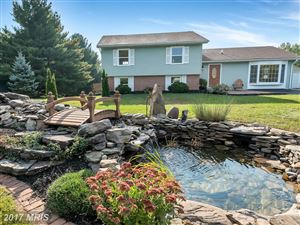 Photo of 10239 ALLVIEW DR, FREDERICK, MD 21701 (MLS # FR10099524)