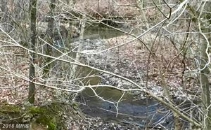 Photo of LOT 3 SHALE PIT DR, FALLING WATERS, WV 25419 (MLS # BE10187533)
