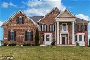 Photo of 14427 FREDERICK RD, COOKSVILLE, MD 21723 (MLS # HW9954535)