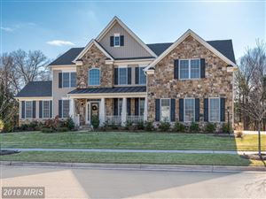Photo of 41308 LAVENDER BREEZE CIR, ALDIE, VA 20105 (MLS # LO10129535)