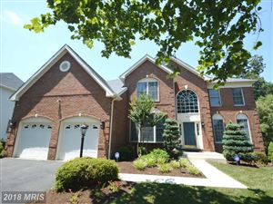 Photo of 25733 HOWERTON DR, CHANTILLY, VA 20152 (MLS # LO10294542)