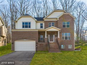 Photo of 148 BOX TURTLE CT, NEW MARKET, MD 21774 (MLS # FR10211555)