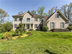 Photo of 406 BUEDEL CT, SPARKS, MD 21152 (MLS # BC10175560)