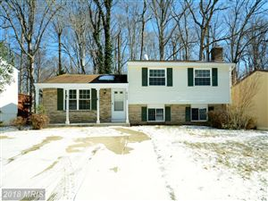 Photo of 8123 WINTER BLUE CT, SPRINGFIELD, VA 22153 (MLS # FX10154561)