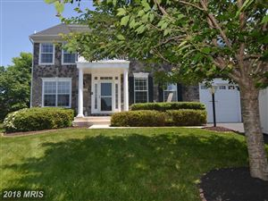 Photo of 20888 PLANETREE FOREST CT, STERLING, VA 20165 (MLS # LO10250569)
