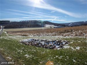 Tiny photo for 28 SETTLERS PASS, MC HENRY, MD 21541 (MLS # GA9816579)