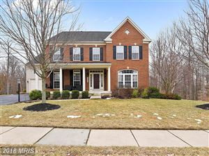 Photo of 21015 HOODED CROW DR, LEESBURG, VA 20175 (MLS # LO10160589)