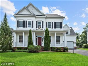Photo of 22392 NICKMAN WAY, LEESBURG, VA 20175 (MLS # LO10196596)