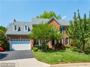 Photo of 13102 LOU ALICE WAY, HERNDON, VA 20171 (MLS # FX10156606)