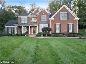 Photo of 15222 PAVLO PL, WATERFORD, VA 20197 (MLS # LO10138636)