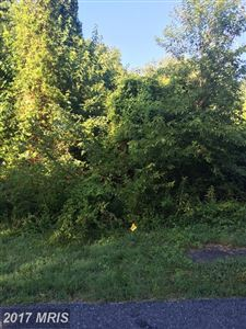 Photo of 27021 BEE TREE RD, HENDERSON, MD 21640 (MLS # CM10020641)