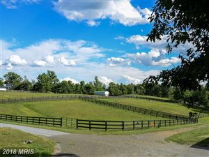 Photo of 35469 MILLVILLE RD, MIDDLEBURG, VA 20117 (MLS # LO8731662)