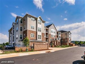 Photo of 605 QUARRY VIEW CT #408, REISTERSTOWN, MD 21136 (MLS # BC10239681)