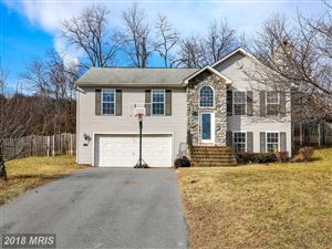 Photo of 144 REDHAVEN CT, THURMONT, MD 21788 (MLS # FR10139700)