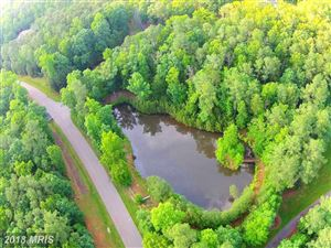 Photo of 11204 HONOR BRIDGE FARM PL, SPOTSYLVANIA, VA 22551 (MLS # SP10259705)