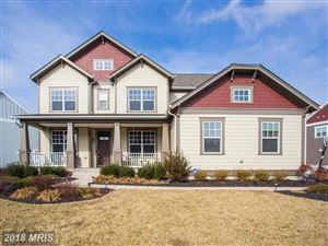 Photo of 24620 LAVENDER GROVE DR, ALDIE, VA 20105 (MLS # LO10137713)
