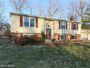 Photo of 13 CANDLEBERRY CT, STERLING, VA 20164 (MLS # LO10188718)