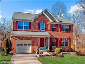 Photo of 6228 WAVING WILLOW PATH, CLARKSVILLE, MD 21029 (MLS # HW10137735)
