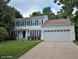 Photo of 13416 PITCH PINE CT, CHANTILLY, VA 20151 (MLS # FX10326744)