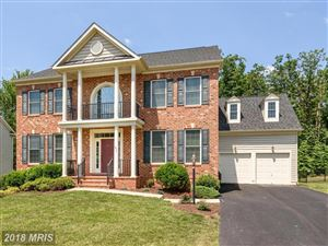Photo of 40593 BANSHEE DR, LEESBURG, VA 20175 (MLS # LO10289751)