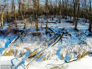 Tiny photo for Big Frog RD, OAKLAND, MD 21550 (MLS # GA9917765)