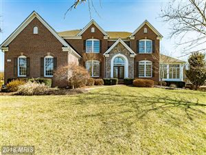 Photo of 24106 MERCERS CROSSING CT, ALDIE, VA 20105 (MLS # LO10156770)