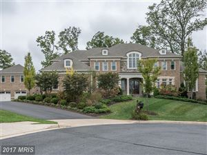 Photo of 11448 AIDAN RUN CT, GREAT FALLS, VA 22066 (MLS # FX10081772)