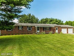 Photo of 4505 PINE VALLEY CT, MIDDLETOWN, MD 21769 (MLS # FR10236781)
