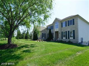 Photo of 16821 FALCONHURST DR, PURCELLVILLE, VA 20132 (MLS # LO10253783)