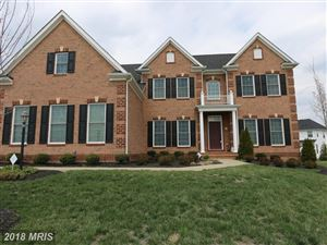 Photo of 42530 HARVEST HORN WAY, CHANTILLY, VA 20152 (MLS # LO10208791)