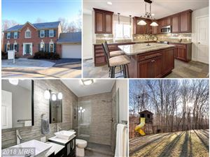 Photo of 7691 MIDDLE VALLEY CT, SPRINGFIELD, VA 22153 (MLS # FX10142799)