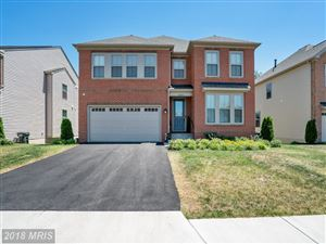 Photo of 42453 ABNEY WOOD DR, CHANTILLY, VA 20152 (MLS # LO10295806)