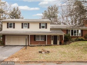 Photo of 13525 SPRING HILL DR, HAGERSTOWN, MD 21742 (MLS # WA10159810)