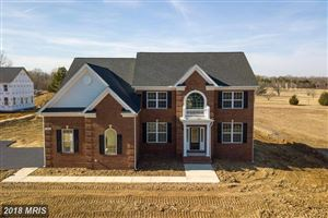 Photo of 7249 FILLY CT, HUGHESVILLE, MD 20637 (MLS # CH10171821)