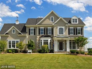 Photo of 18285 WILD RASPBERRY DR, PURCELLVILLE, VA 20132 (MLS # LO10275831)