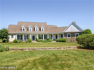 Photo of 19810 SILCOTT SPRINGS RD, PURCELLVILLE, VA 20132 (MLS # LO10271837)