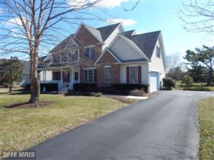 Photo of 28471 WATERVIEW DR, EASTON, MD 21601 (MLS # TA10182877)